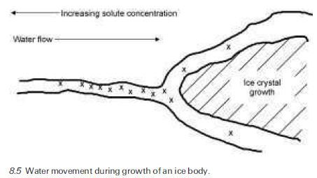 Photo of Freezing processes Freezing point of pore liquids
