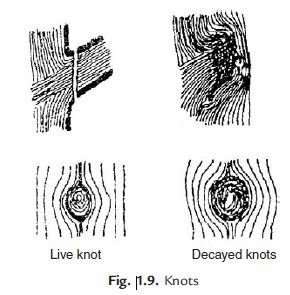 Photo of Defects in Timber